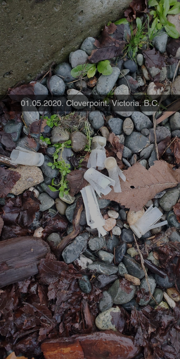 Clover Point Image